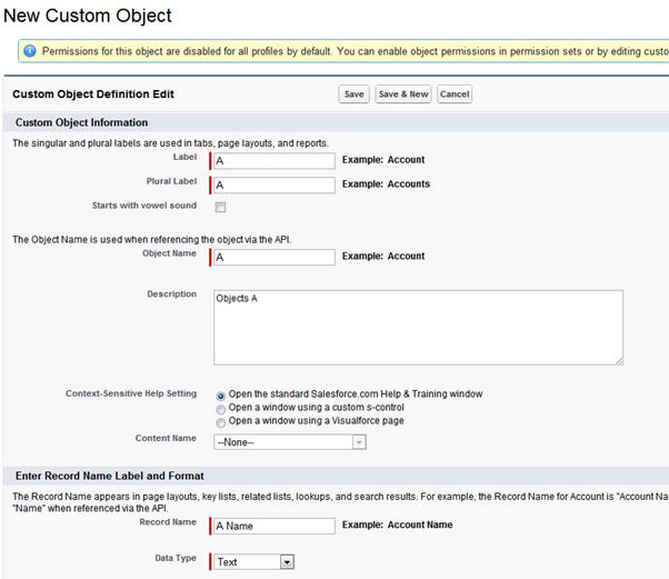 Creating Custom object in salesforce