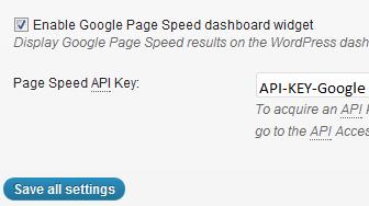 W3 Total Cache Google API Setting