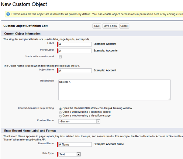 Creating Custom object in salesforce
