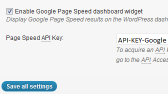 W3 Total Cache Google API Setting